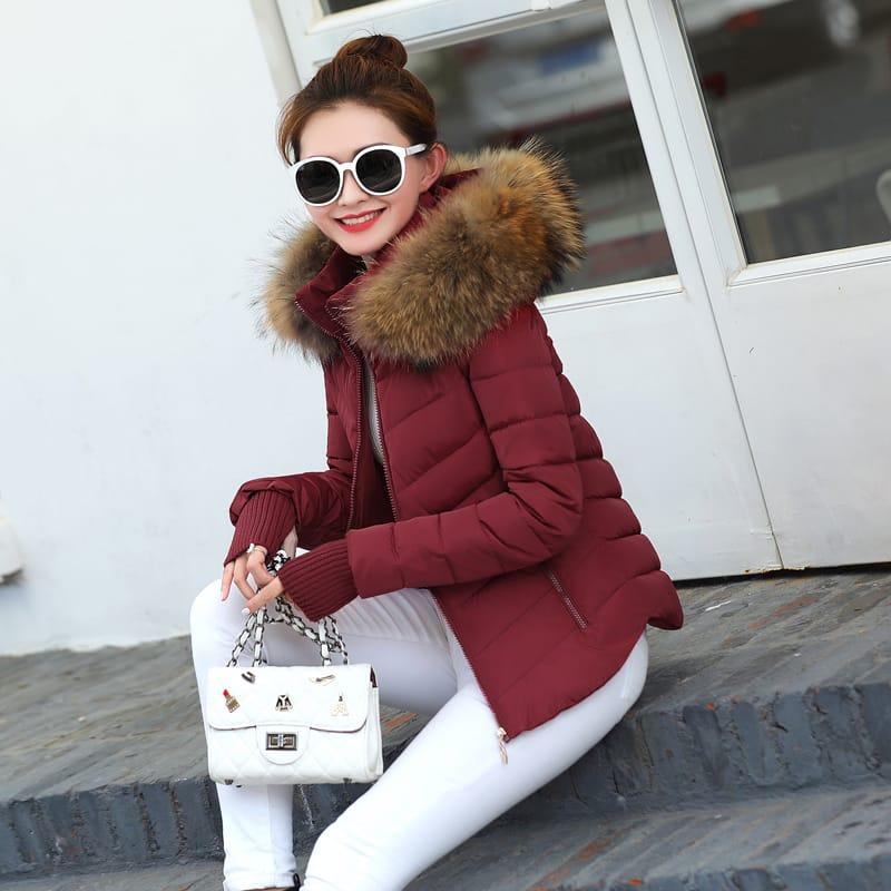 75df044e5ea2 2017 Autumn Winter Jacket Women Parkas for Coat Fashion Female Down Jacket  With a Hood Large Faux Fur Collar Coat - Hantano